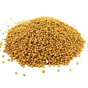 Горчица семя желтое