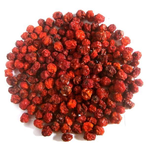 Рябина красная ягоды